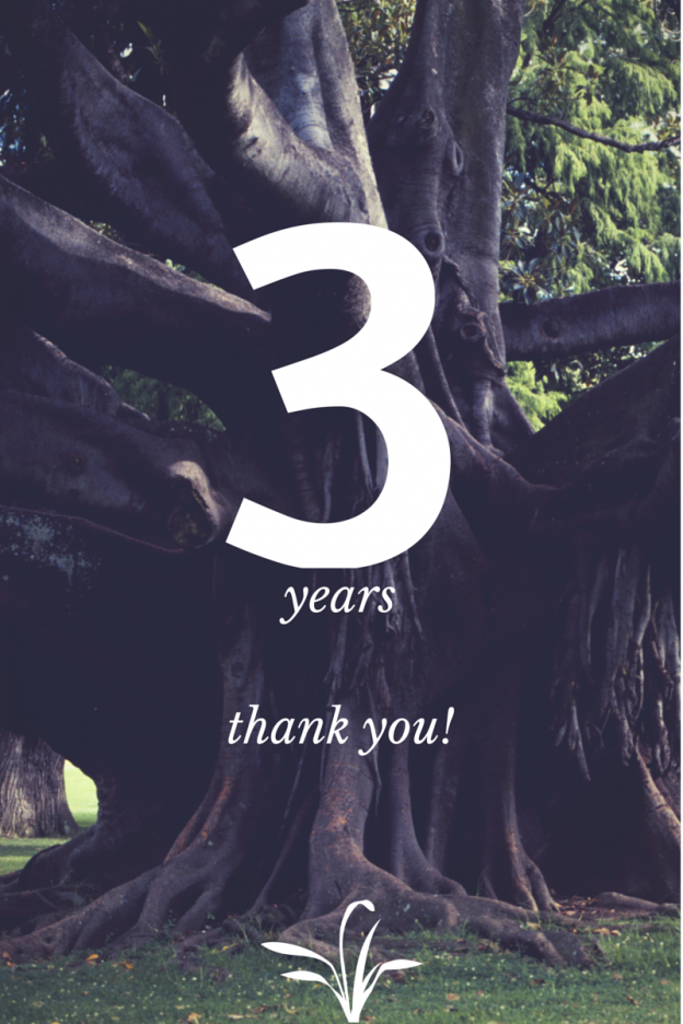 The Wilson Group Celebrates 3 Years of Satisfied Customers